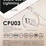 SilverStone câble usb CPU03